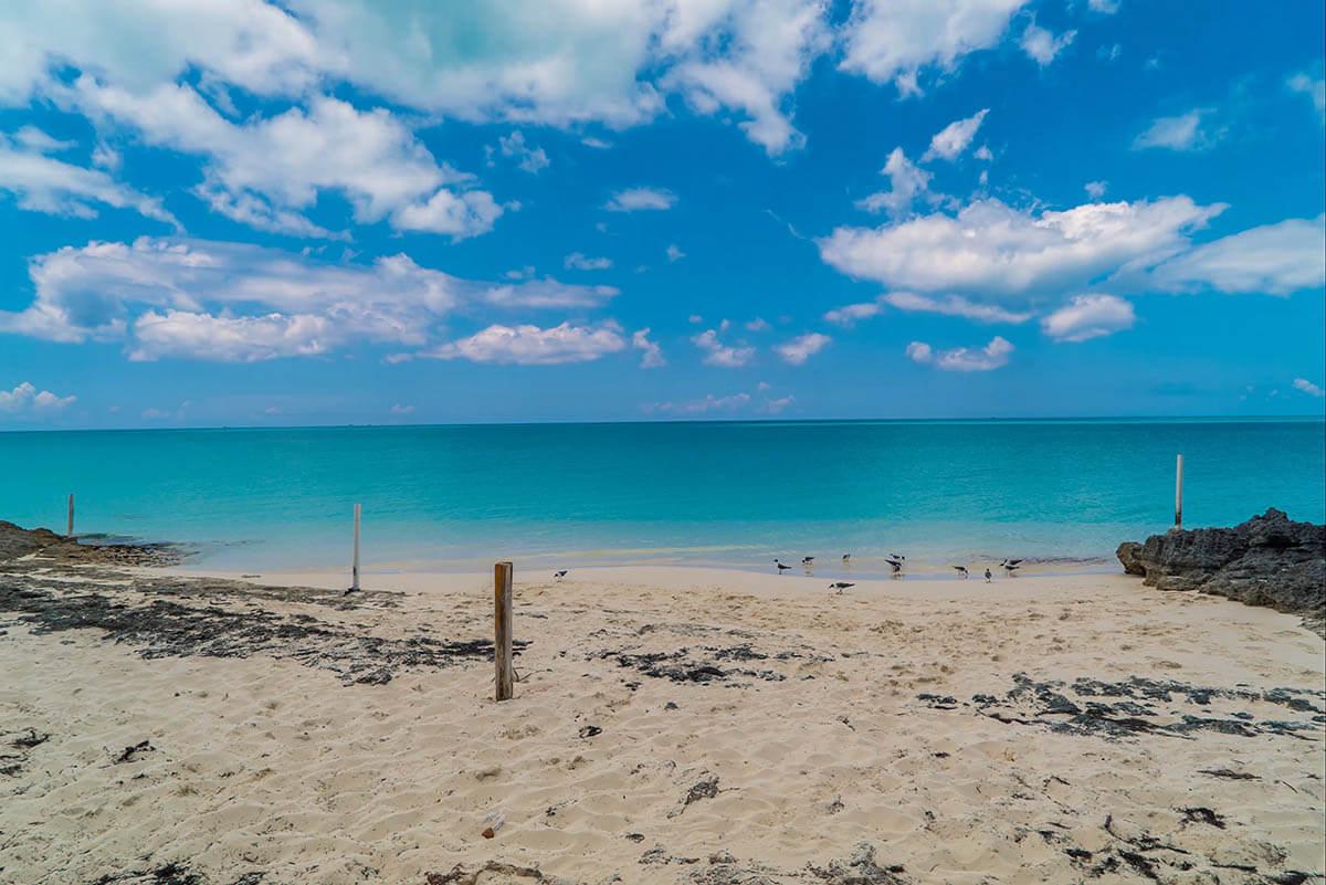 Santanas Beach Things to do in Exuma Little Exuma