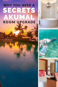 Ever wonder what it would be like to stay in a Master Suite Swim Out? We have you covered! Check out this detailed review of a Romance Master Suite at Secrets Akumal Riviera Maya   Why You Should Get A Secrets Akumal Room Upgrade   Secrets Akumal Review   Secrets Akumal Riviera Maya Review #SecretsAkumal #Akumal #SecretsResorts #vacationcouple #AkumalBeach @SecretsResorts