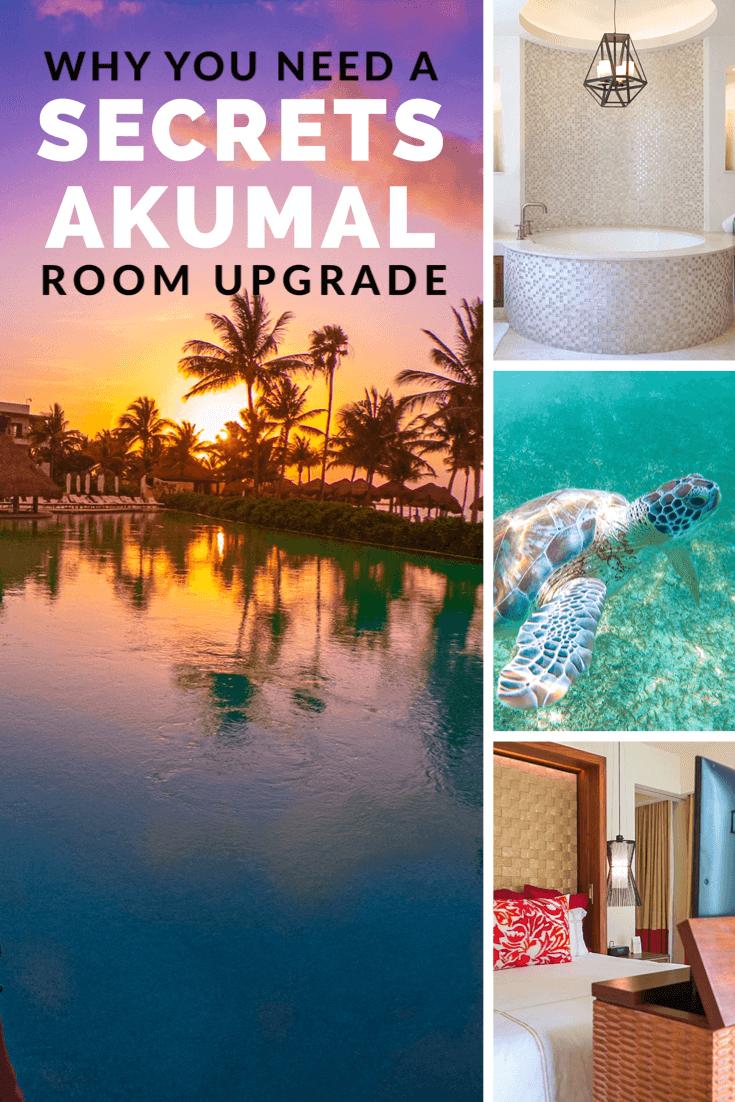Why You Need A Secrets Akumal Room Upgrade